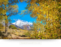 living room wall art and home wall decor mountains with snow and colorful aspen trees
