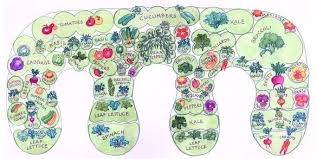 Keyhole Garden Design Best Permaculture Workbook For Growing Food Gardening Pinterest