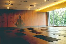 Small Picture Best Yoga Studio Design Ideas Photos Amazing Design Ideas canyus