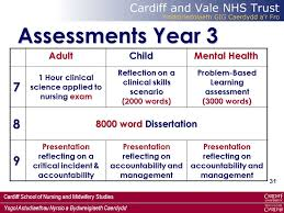 supporting learning and assessment in practice ppt video online  assessments year 3 7 8 9 8000 word dissertation adult child