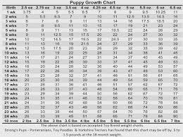 Akita Weight And Growth Chart 46 Symbolic Akita Weight Chart