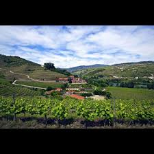 The Wine Country Vacation Reinvented Six Senses Douro