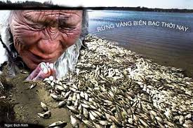 """Image result for """"Đông Á Bệnh Phu"""""""
