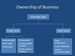 types of business ownerships types of business ownership ib business management ppt download