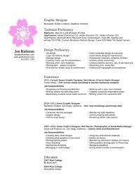 Resume Web Designer Resume Examples