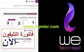 الآن.. فاتورة التليفون الأرضي عن يوليو 2021 عبر موقع الشركة المصرية  للإتصالات : صحافة الجديد منوعات