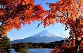 紅葉の河口湖と富士山 Autumn leaves in ...