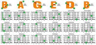 Bass Strings Notes Diagram Technical Diagrams
