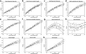 Fetal Cerebellum Measurement Chart Normative Biometry Of The Fetal Brain Using Magnetic