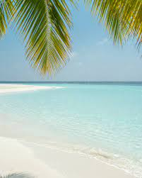 750+ Tropical Beach Pictures