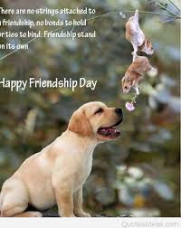 Happy-Friendship-Day-funny-image-with-a-dog-and-quote.jpg via Relatably.com