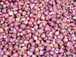 This Type Of Onion Can Help Fight Drug Resistant