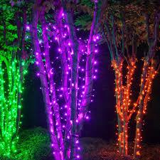 Indoor Halloween Lights Halloween Do It Yourself Wintergreen Lighting Led Purple