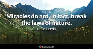 Quotes From Cs Lewis Delectable C S Lewis Quotes BrainyQuote