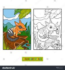 Small Picture Coloring Book Children Numbat Background Stock Vector 598197149