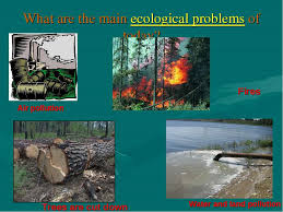 Экология на английском языке реферат > в каталоге документов Экология на английском языке реферат