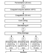 Whey Processing Flow Chart Flow Chart Of Processing Of Mozzarella Cheeses Made From