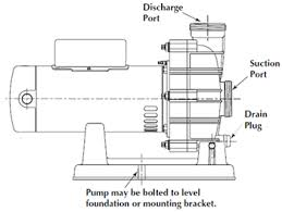 spa pump replacement guide poolsupplyworld blog 2 speed spa pump wiring diagram at Waterway Executive 56 Wiring Diagram