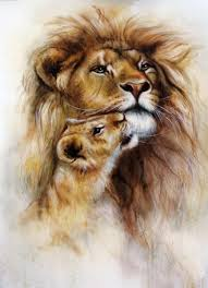 ᐈ lion and lioness stock pictures
