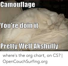 Camouflage Youre Doin It Pretty Well Akshully