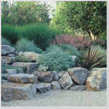Small Picture 213 best Rock gardens images on Pinterest Garden ideas Rock