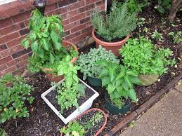 Small Picture Garden Design Garden Design with Outdoor Herb Garden Home Design