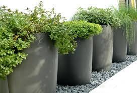 Outdoor Garden Pots Nz