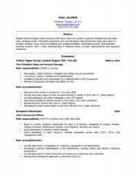 Canadian Style Resume Format Resume Format Banking Investment Resume Format  Template