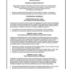 Personal Banker Resume Templates Director Wholesale Banking Resume Sample Template Personal Banker 61