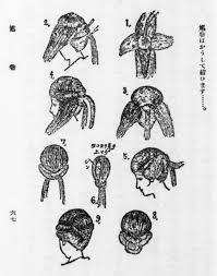 ポーラ文化研究所 On Twitter 顔の形や髪質ごとに似合う髪型のおすすめ