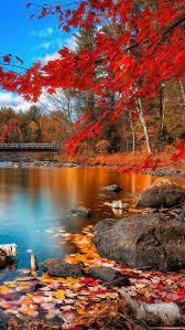 1080x1920 Autumn Wallpapers HD Desktop ...