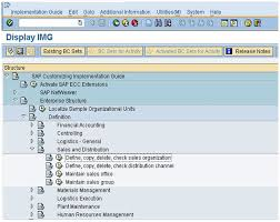 Sap Sd Organizational Structure Flow Chart How To Map The Elements Of The Sap Sd Organizational