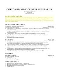 Example Profile For Resumes Skills Examples For Resume Functional It Director Customer