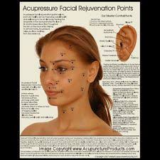 Facial Rejuvenation Acupuncture Points Chart Cosmetic Acupuncture Points Google Search Body Points