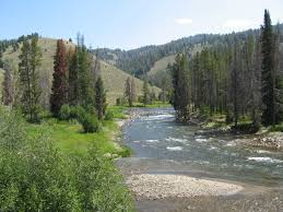 Salmon River Idaho Wikipedia