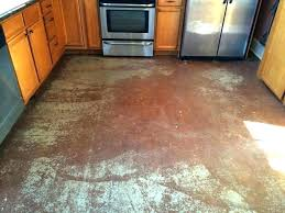 stained concrete floors kitchen staining concrete floor acid stained concrete floors homes best kitchen opts floor
