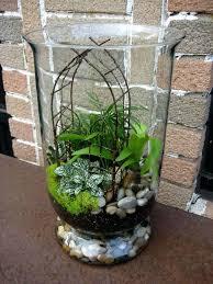 indoor miniature garden plants indoor mini garden w arbor in large jar best plants for indoor indoor miniature garden