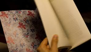 persephone   The Sleepless Reader
