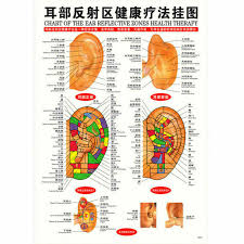 Meridian Energy Pen Chart Whole Body English Acupuncture Meridian Acupressure Points Poster Chart Wall Map