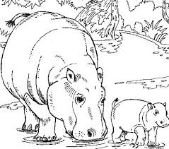 Hippo Coloring Page Hippopotamus Coloring Pages Hippo Coloring Pages