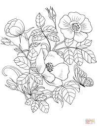 15 Unique Coloring Pages Spring Flowers Karen Coloring Page