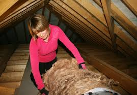 loft insulation. posts tagged: loft insulation. green living tips to save money insulation