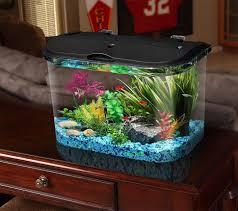 gallon fish tank decoration ideas unique tanks phenomenal image 30 phenomenal 3 gallon fish tank decoration