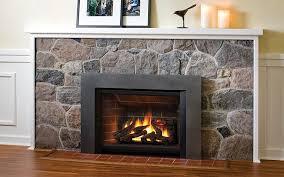image of fireplace inserts wood burning type