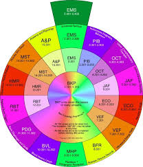 Kinesiology Emotion Chart The Prosperity Doctor Quantum Medicine And Energy Healing
