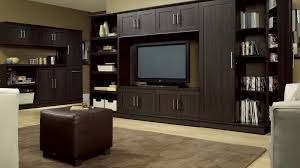 Sauder Kitchen Furniture Homeplus Home Storage Cabinets Bookcases And More Stand Alone