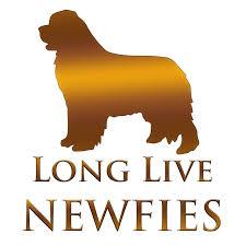 newfoundland dog design at newfielove unique gifts design by christine mullis 2018 newfie