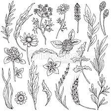 Small Picture Formal Herb Garden Design Italian Garden Design Home Plan And