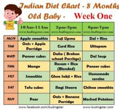 Baby Food Chart After 8 Months Indian Diet Chart For 8 Months Old Baby Budding Star