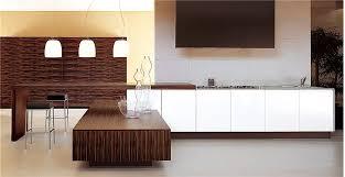 custom modern kitchen cabinets. Custom Modern Kitchen Cabinets